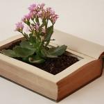 libro-jardinería-alicante