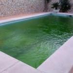 piscina verde