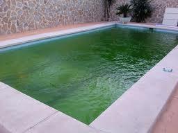 Qu tenemos que hacer en la piscina despu s de una for Cubas de agua para llenar piscinas