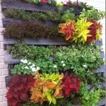 palet-jardin-vertical-3