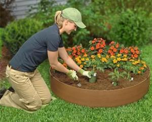 cuidados-jardin