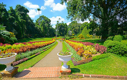 7 consejos de jardiner a para tu hogar el blog de los for Jardines de hogar